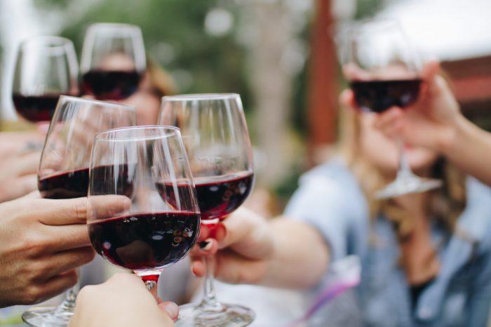 Organic wine Private tour