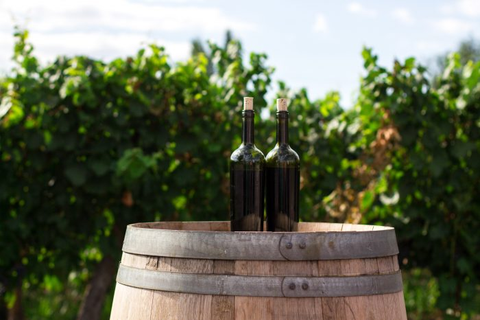 Wine tasting + Lunch and wine tour